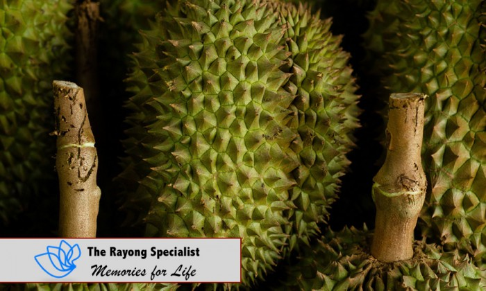 Turian Thai fruit in Rayong