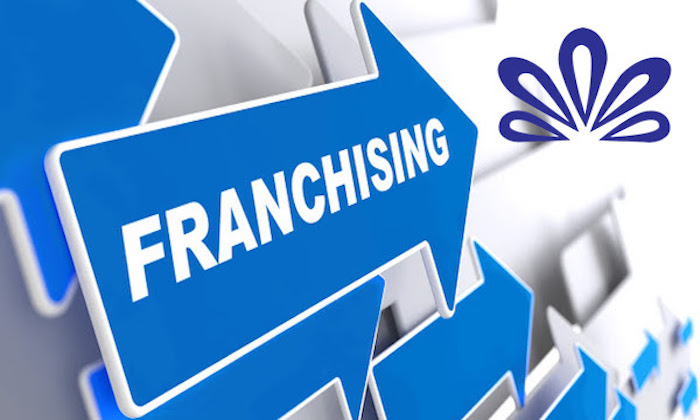 Franchising Article Icon